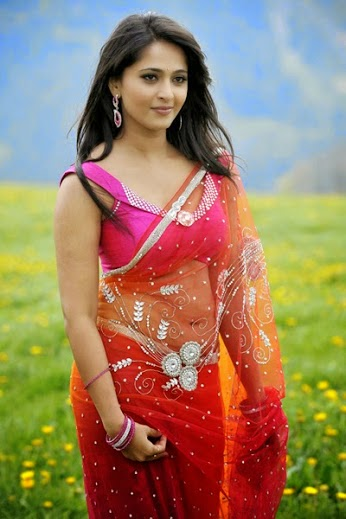anushka-shetty-saree-still-tollywood wallpapers